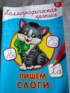 russisanwritingbook